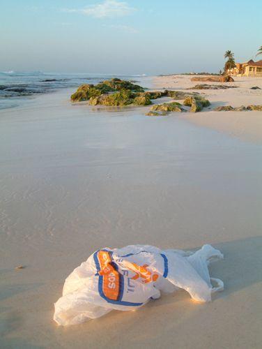 plastic_bag_ban_mexico